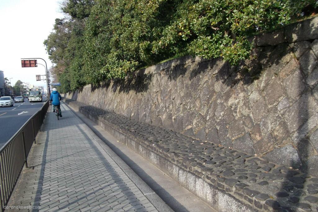 京都踏水会と夷川発電所周辺
