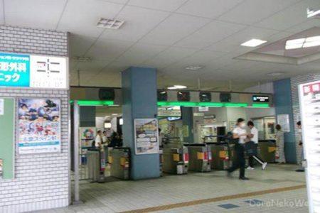 わざわざ東大阪まで歩きに行ったった