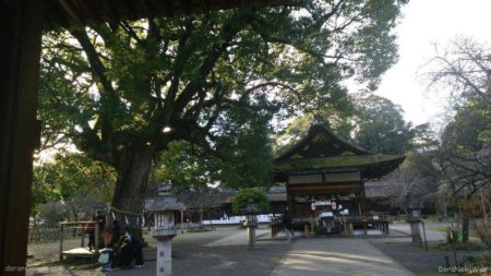 平野神社ぁ。