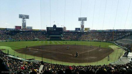 阪神甲子園球場にてオープン戦を観戦しました。
