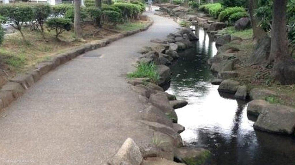 見沼代用水と暗渠のハナシ。