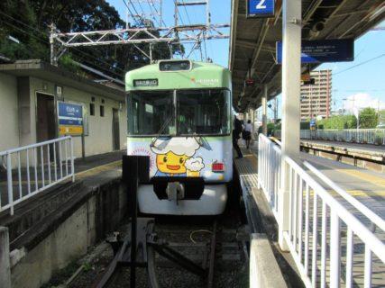 「おでんde電車」「ビールde電車」のラッピング電車2ND。