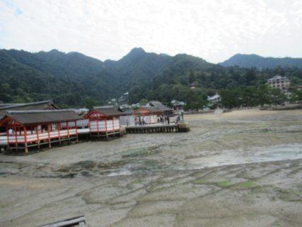 桟橋に戻る途中の、嚴島神社の周辺です。