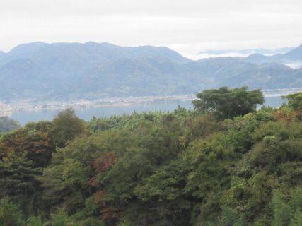 日本のハワイ、トリンドルさんを思い出しますな~。
