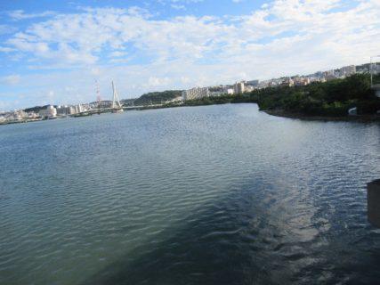 そうですか、漫湖は湖ではなく干潟でしたか。