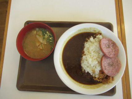 高松自動車道「津田の松原SA」すき家のウインナーカレーですが。