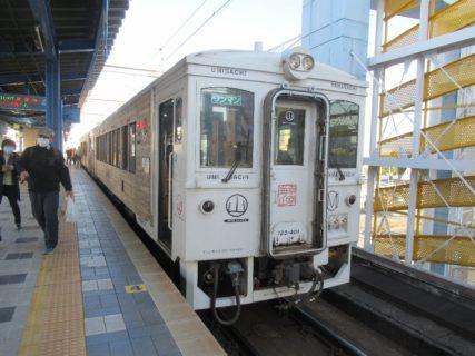 海幸山幸は、JR九州が運行する日南線の臨時特急列車。