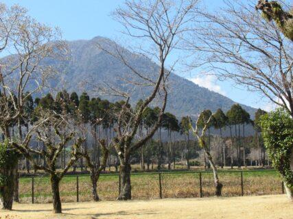 宮崎自動車道、霧島サービスエリアでございます。