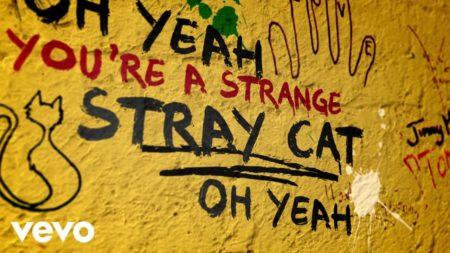 Stray Cat Blues – ROLLING STONES