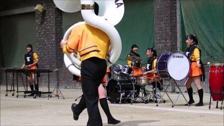 2019年3月24日 さくらパレード交歓コンサート ペンギン隊