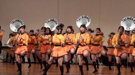 橘祭2013