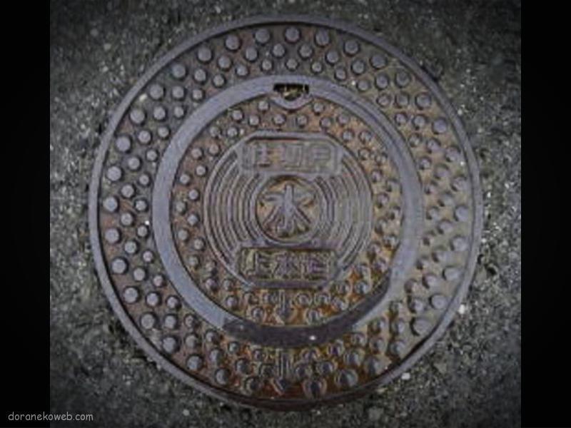 日高村(高知県)の「フタw」