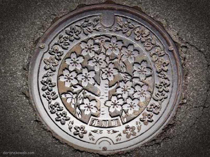 井川町(秋田県)の「フタw」