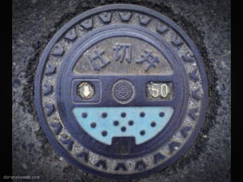 肝付町(鹿児島県)の「フタw」