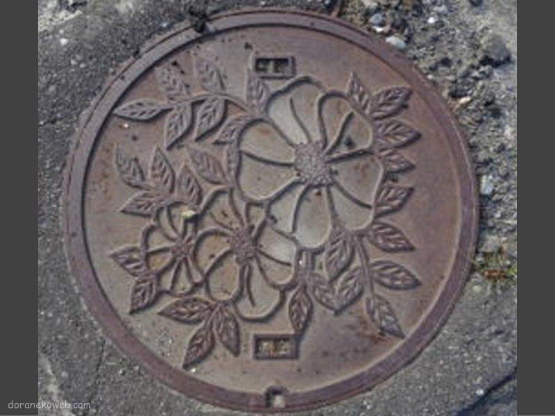 紋別市(北海道)の「フタw」