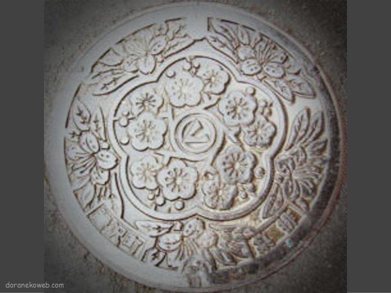睦沢町(千葉県)の「フタw」