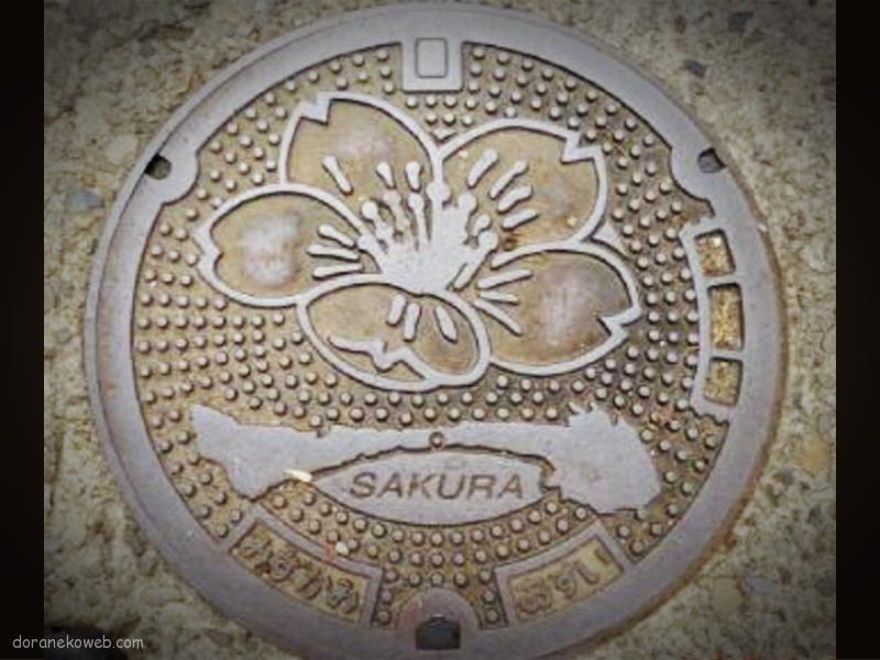 水上村(熊本県)の「フタw」