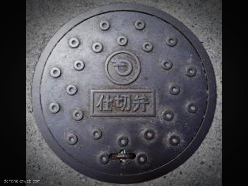 大宜味村(沖縄県)の「フタw」