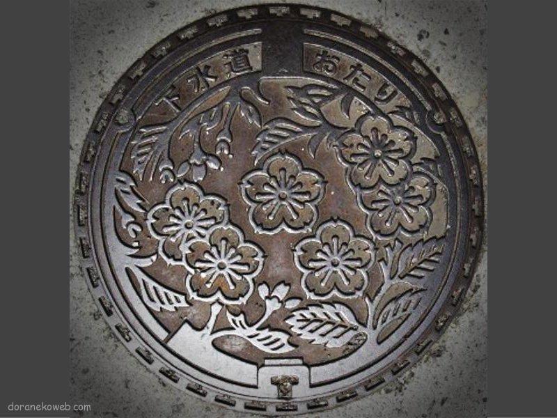 小谷村(長野県)の「フタw」