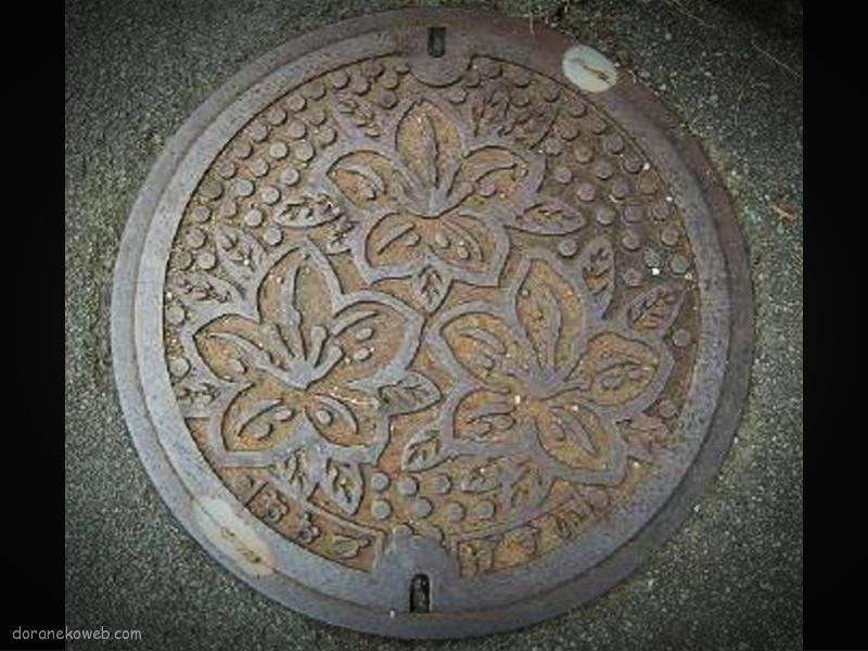大津町(熊本県)の「フタw」