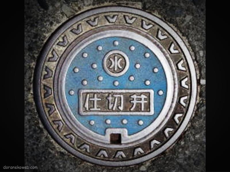 龍郷町(鹿児島県)の「フタw」