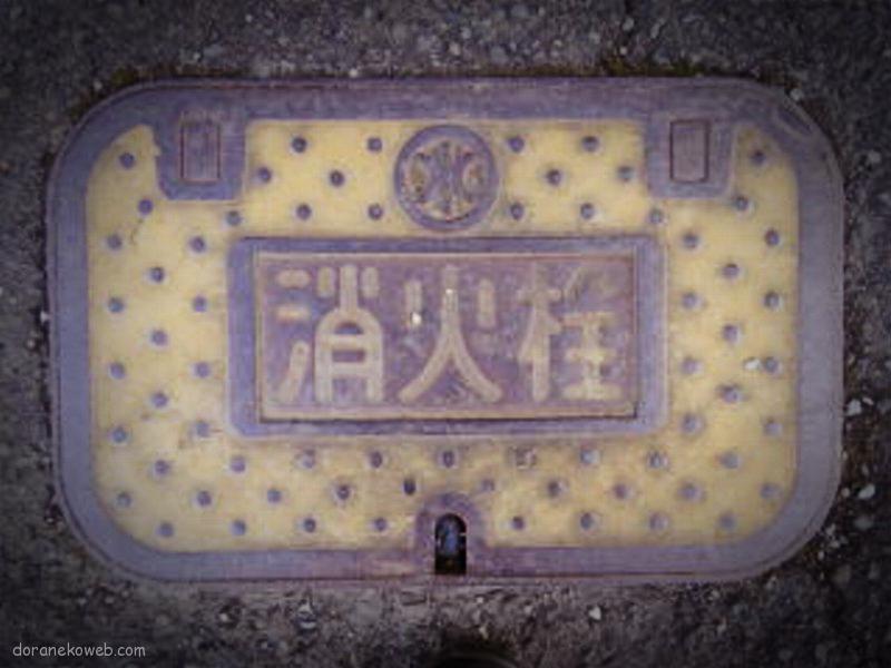 高原町(宮崎県)の「フタw」