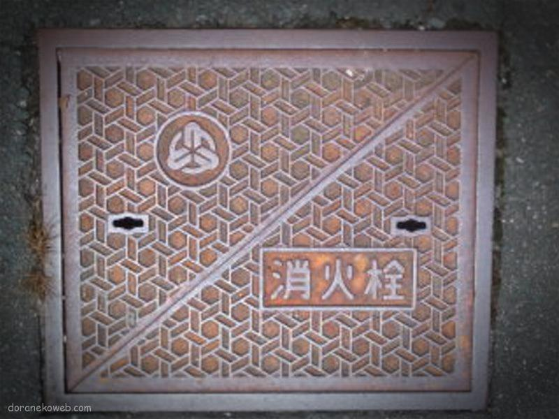 豊根村(愛知県)の「フタw」