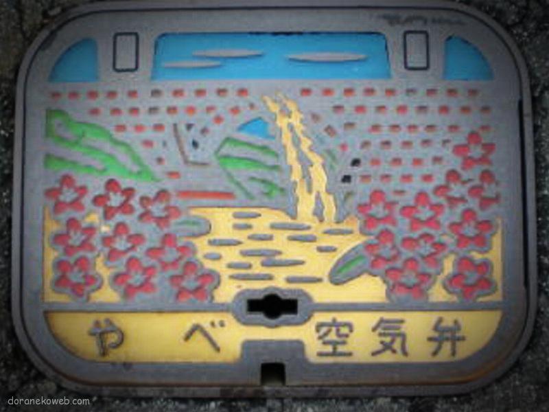 山都町(熊本県)の「フタw」