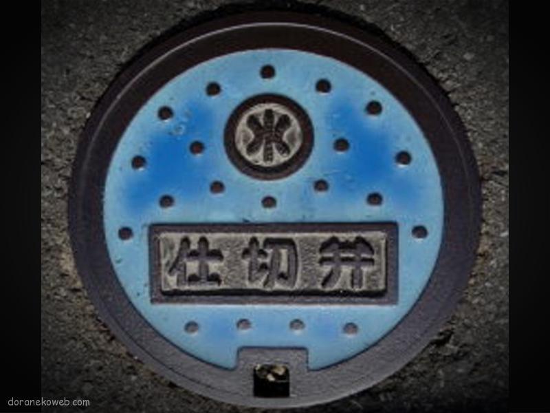 安田町(高知県)の「フタw」