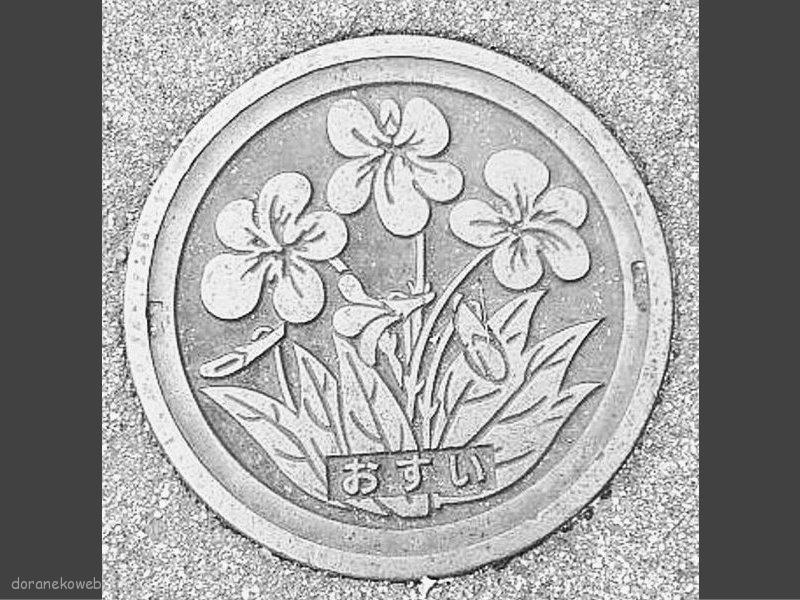 宝塚市(兵庫県)の「フタw」