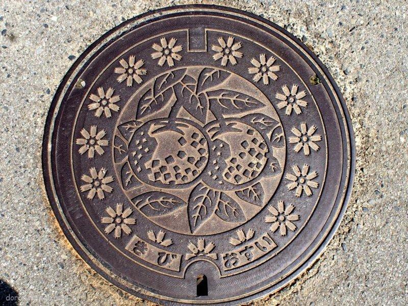 有田川町(和歌山県)の「フタw」Part3