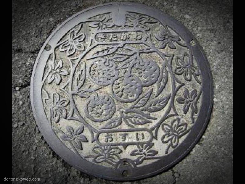 北川村(高知県)の「フタw」
