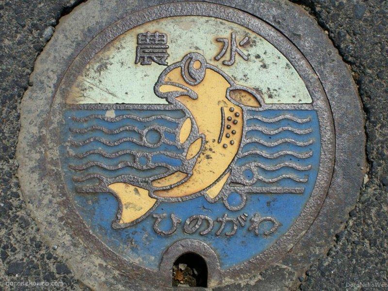 鯖江市(福井県)の「フタw」