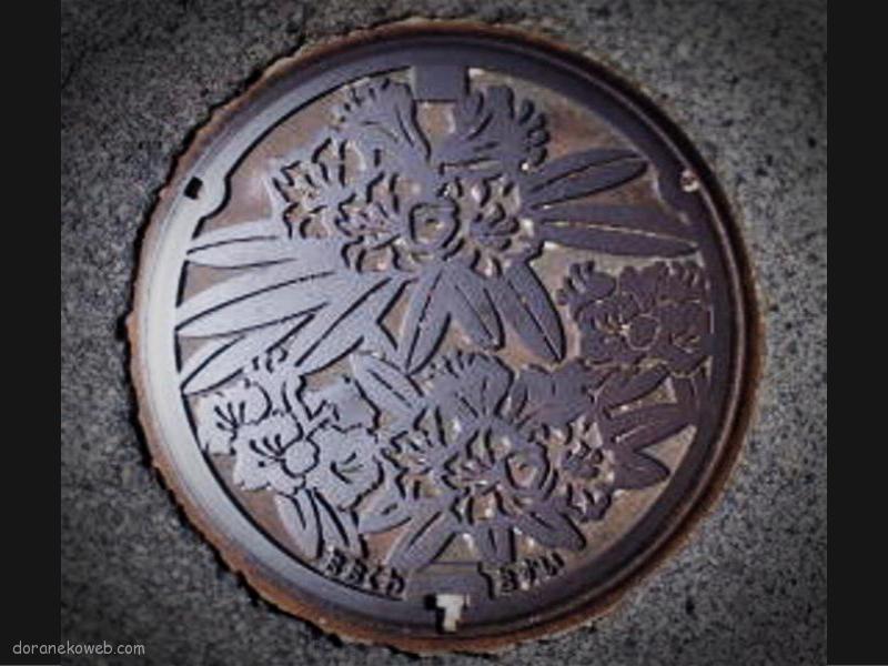 大桑村(長野県)の「フタw」