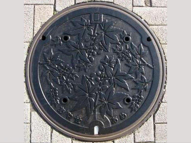 綾瀬市(神奈川県)の「フタw」