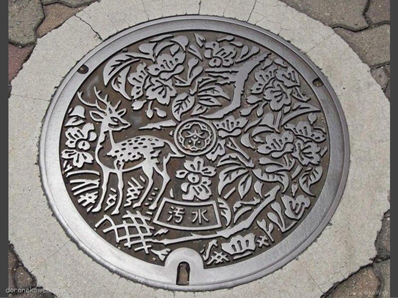 奈良市(奈良県)の「フタw」