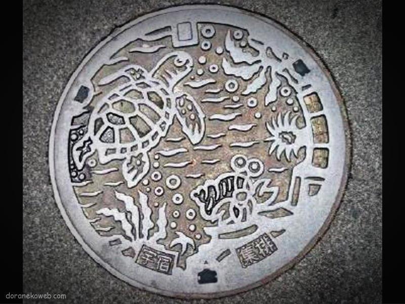 奄美市(鹿児島県)の「フタw」