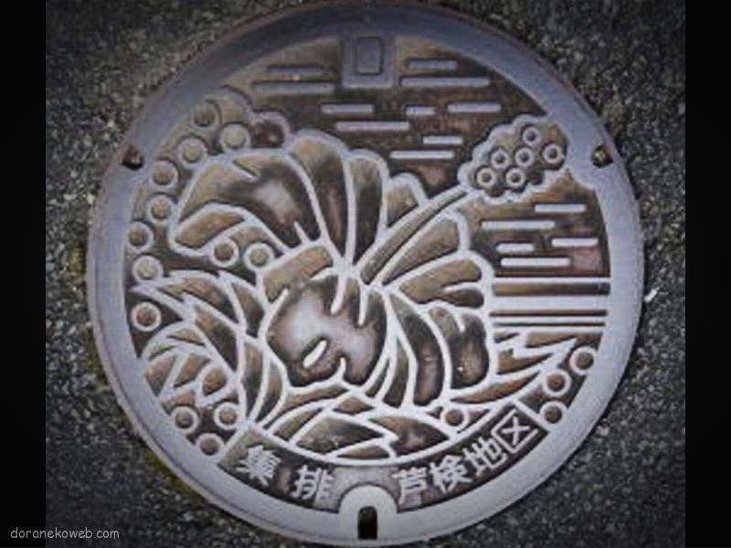 宇検村(鹿児島県)の「フタw」