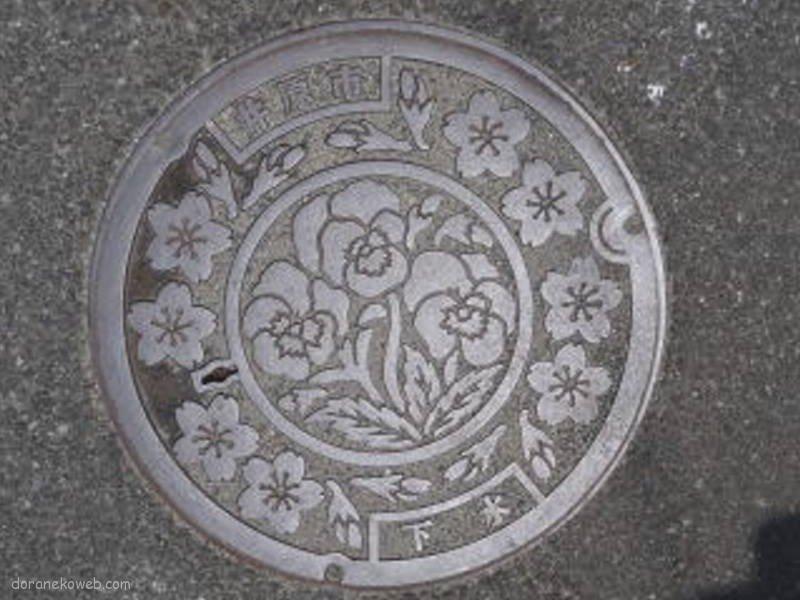 井原市(岡山県)の「フタw」