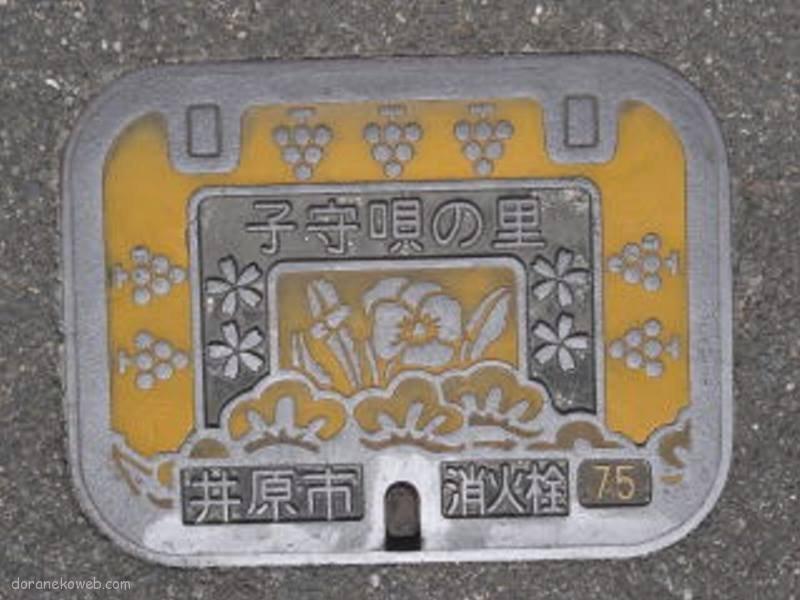 井原市(岡山県)の「フタw」Part3
