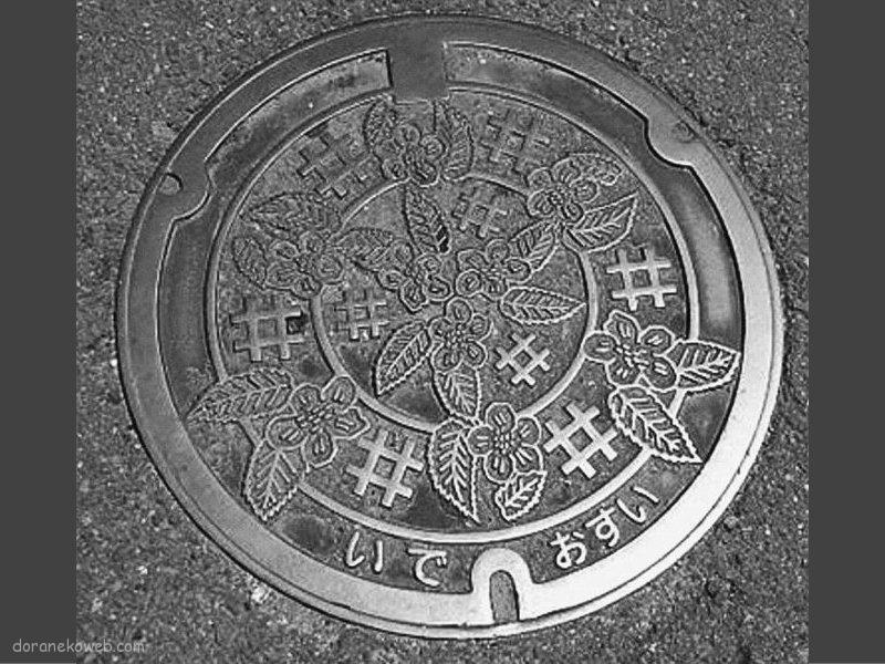 井手町(京都府)の「フタw」