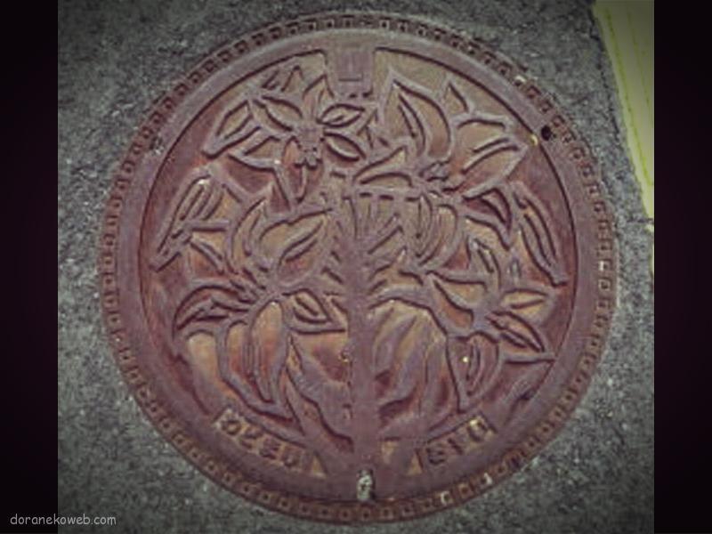 和泊町(鹿児島県)の「フタw」