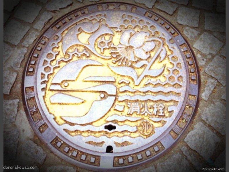 藤沢市(神奈川県)の「フタw」