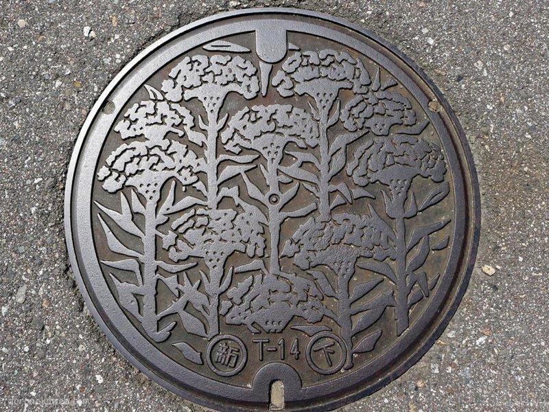 射水市(富山県)の「フタw」Part8