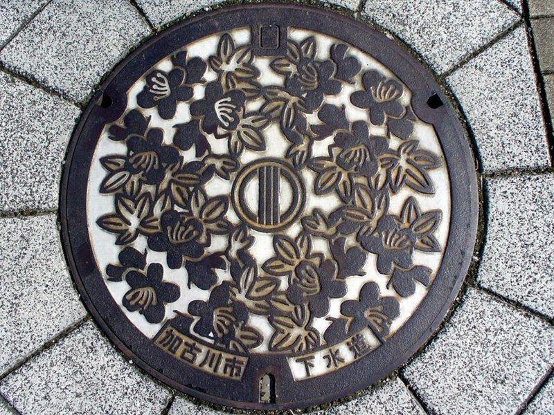 加古川市(兵庫県)の「フタw」Part3