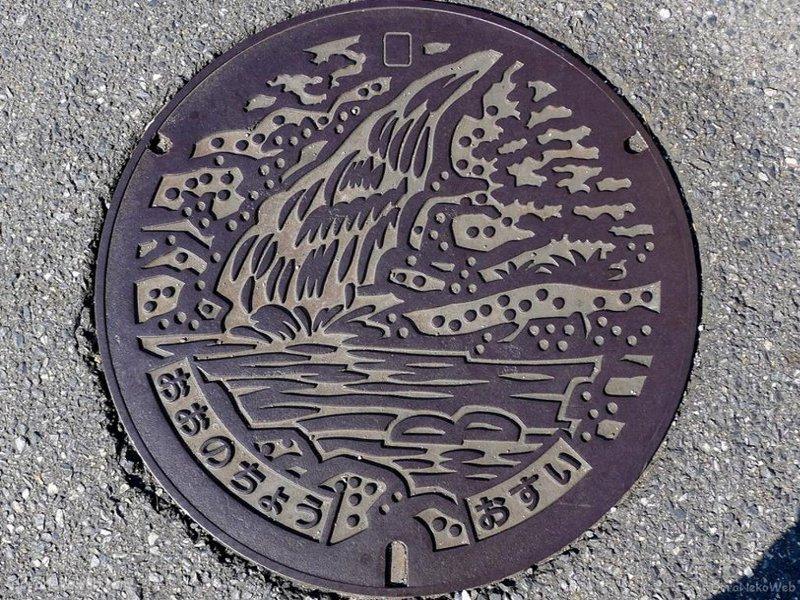廿日市市(広島県)の「フタw」Part2