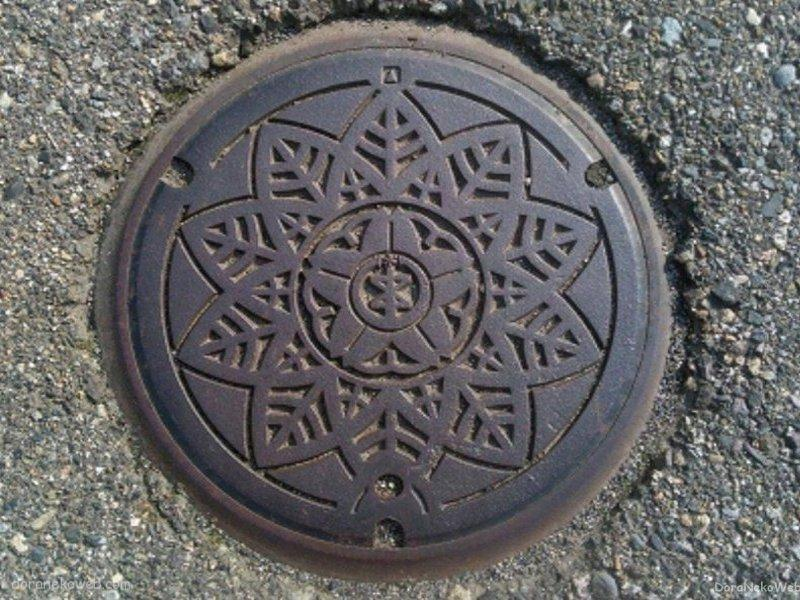 新潟市(新潟県)の「フタw」