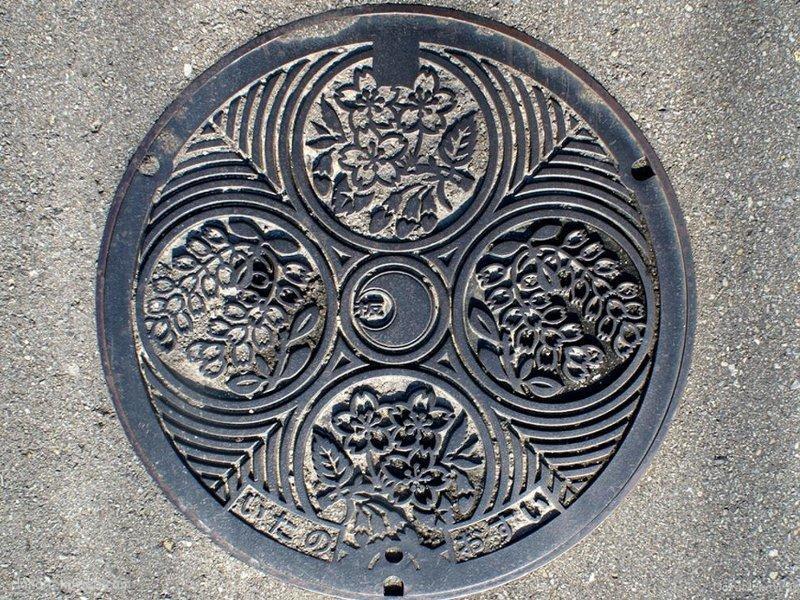 板野町(徳島県)の「フタw」