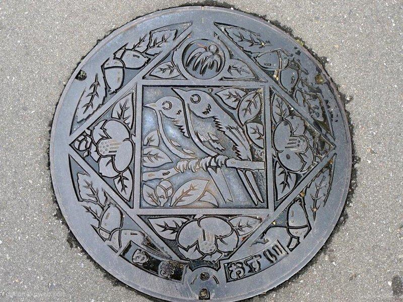 美波町(徳島県)の「フタw」