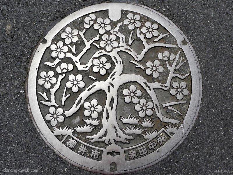 柳井市(山口県)の「フタw」